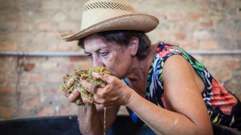 Mosto di vino, bucce, fermentazione del vino, processo produttivo del vino
