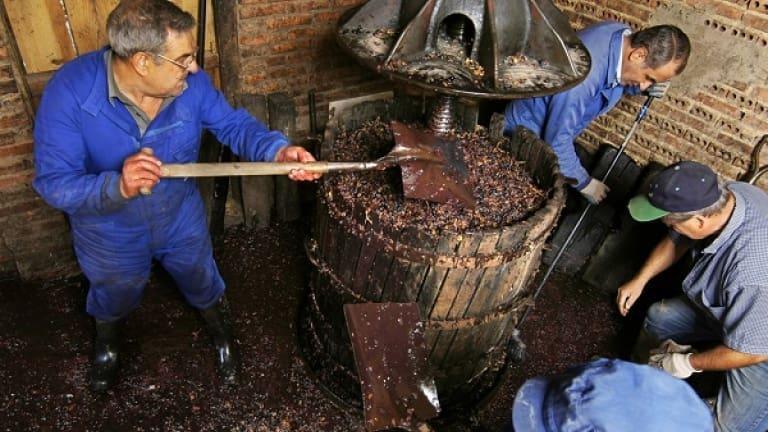 Torchio per schiacciare grappoli, come si produce il vino, guida al vino