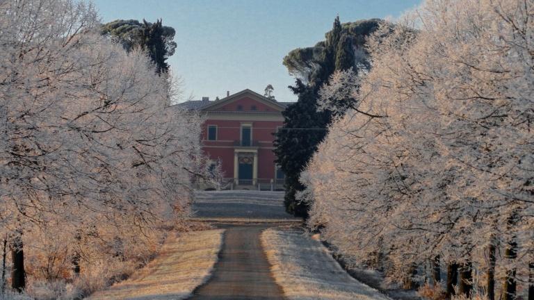Scheda analitica, commento e degustazione dei vini della tenuta Palazzona di Maggio con foto, dati per il contatto diretto